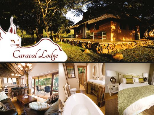 Caracal Lodge